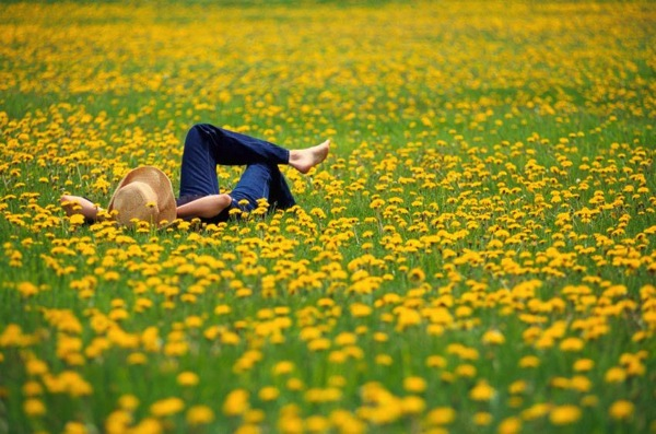 Girl Laying In Field Painting | www.pixshark.com - Images ...