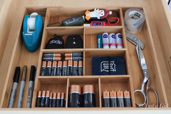 Battery organization 5
