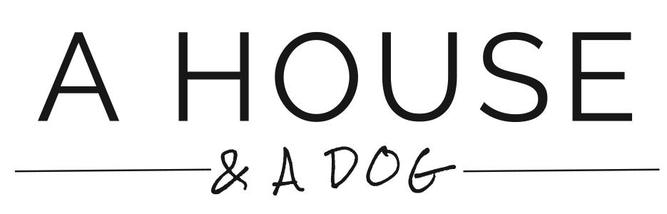 a house and a dog