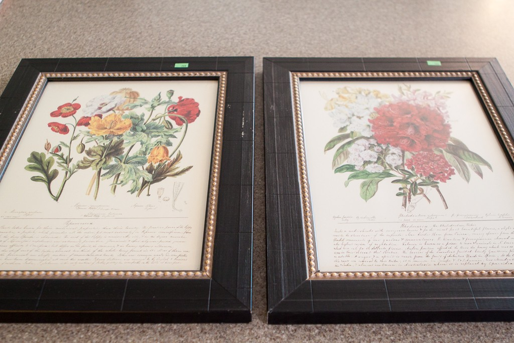 botanical framed