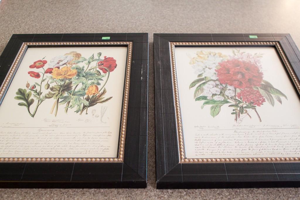 botanical framed