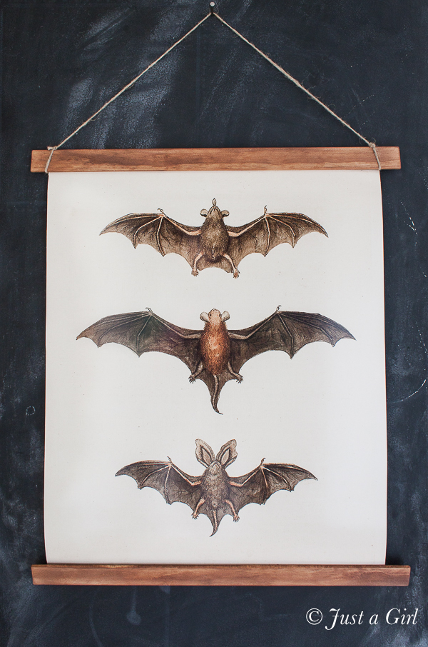 pottery-barn-halloween-bat-print