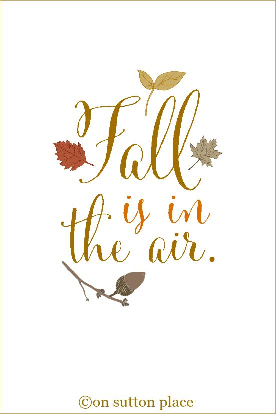 fall-is-in-the-air-free-printable