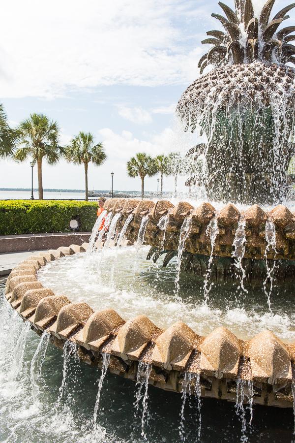 Best of Charleston: The Sights