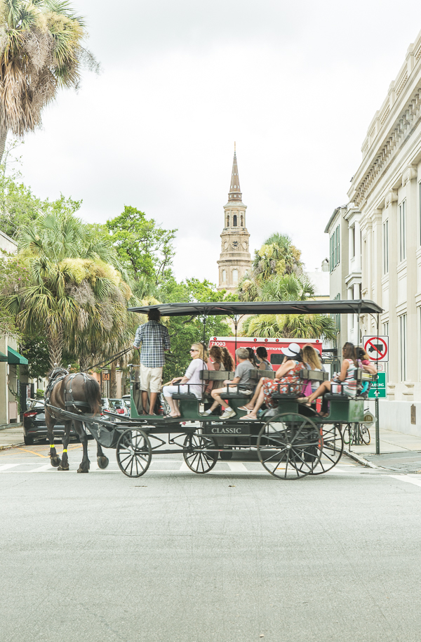 Charleston horse drawn carriage ride