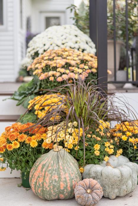 fall porch arrangement of mums, pumpkins, and grasses