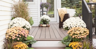 fall porch with orange and white mums grasses, and pumpkins on stairs